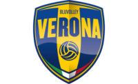 Logo Calzedonia Werona
